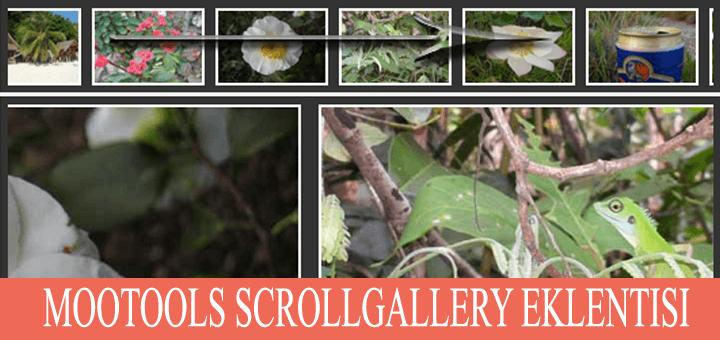 ScrollGallery