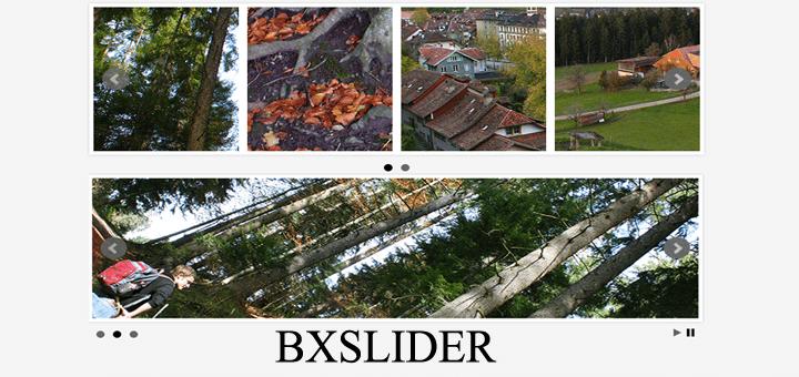 BxSlider