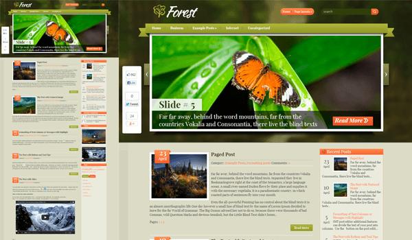Forest 20+  Ücretsiz Wordpress Kişisel  Blog Temaları