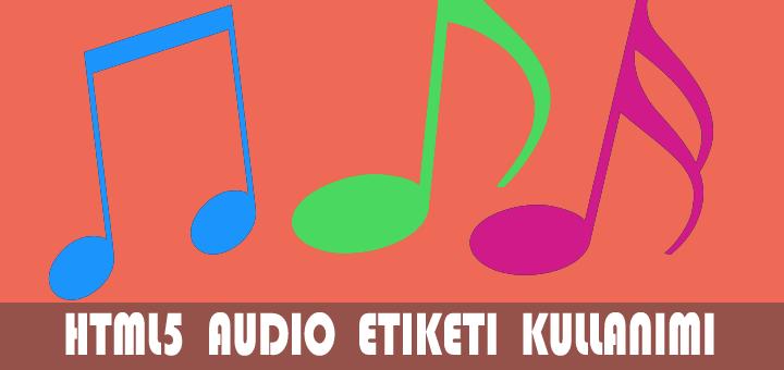 ses formatlar