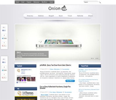 Onion-sarmısak