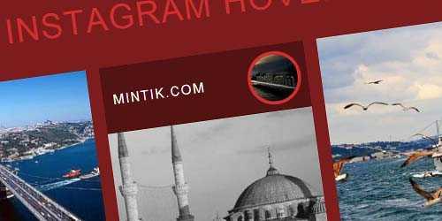 Web siteye Instagram resimlerini çekme